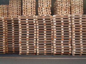 Cargo Palletization Policy